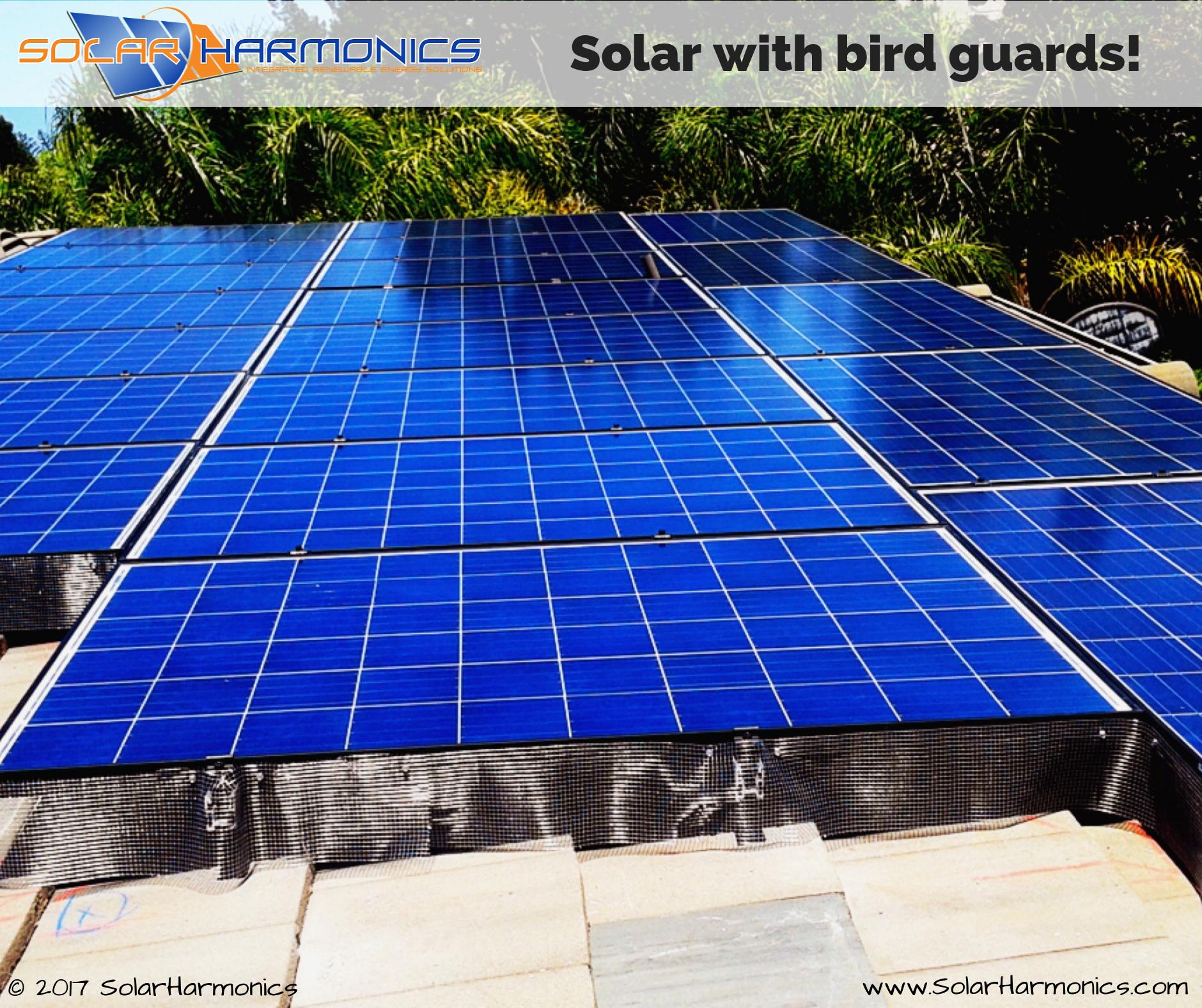 Solar_Harmonics_solar_installation_company_6001–6047-Heritage-Trail_Clayton_CA_United-States (6)